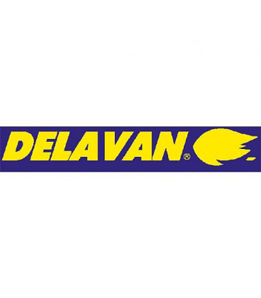 Gicleur Delavan 0,60/45°A