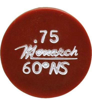 Gicleur Monarch 0,50/45°NS